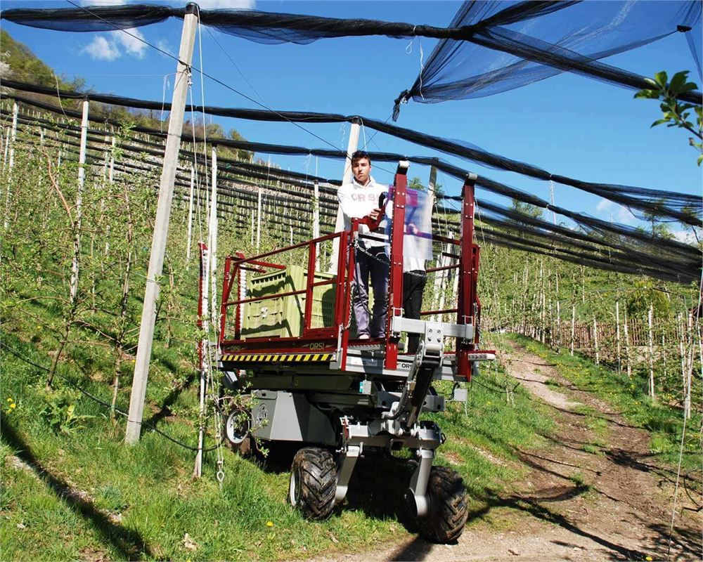 Lifting Platforms For Orchards